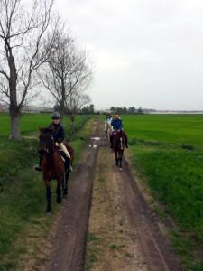 Passeggiata di campagna